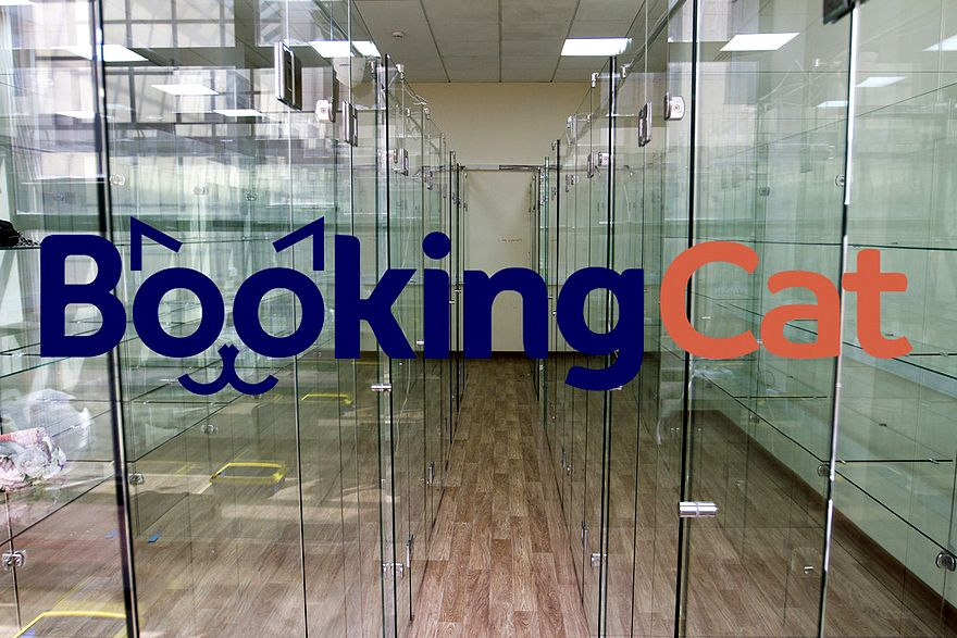 franchise Booking Cat - pet hotels business